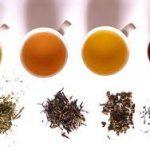 Чай: виды чая и их свойства