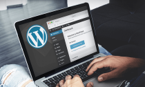 Растущая важность хостинга под WordPress для бизнеса