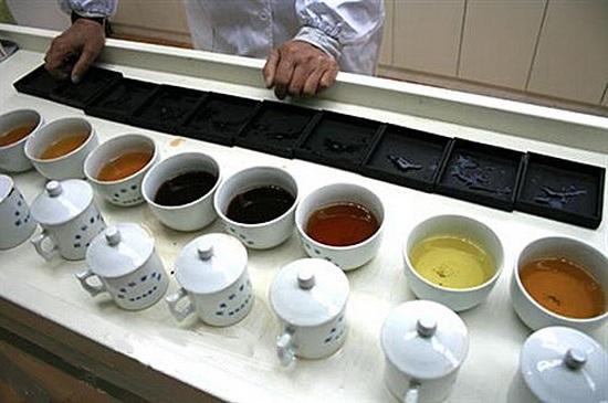 Как выбрать чай Пуэр: главные критерии качества