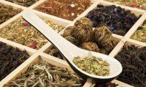 Семь групп китайских чаев: обзор лучших из лучших