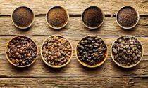 Какие степени обжарки кофе бывают?