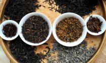 Чайная индустрия в Индии