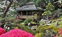 Современные чайные сады