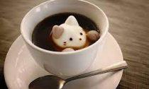 Япония и кофе