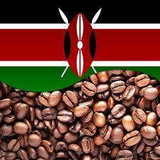 Кения АБ Камоко