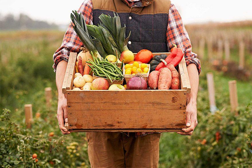 Доставка натуральных фермерских продуктов с Черемушского рынка