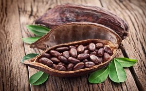 Кофе арабика и теоброма какао